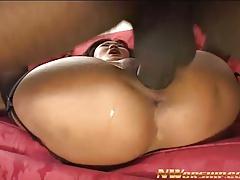 Little Asian Girl Interracial Porn Black Cock Anal Sex