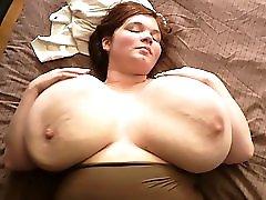 Huge Fat Tit
